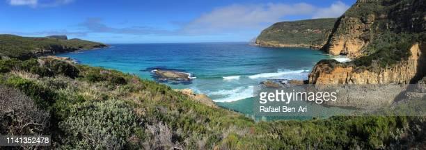 sea cliffs at tasman national park tasman peninsula tasmania australia - rafael ben ari stockfoto's en -beelden
