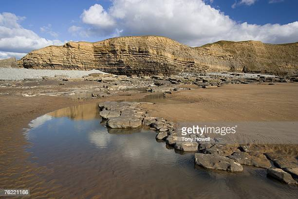 sea cliffs, dunraven bay, glamorgan, wales, uk - tony howell stock pictures, royalty-free photos & images