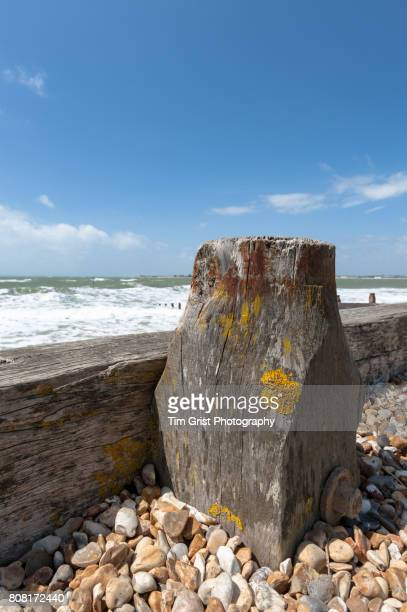 Sea Defence Wooden Post