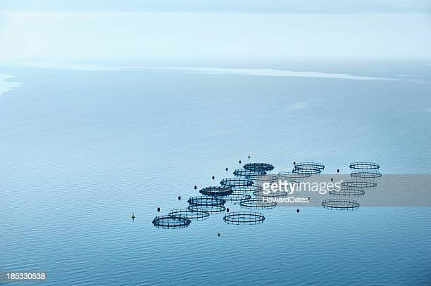 Sea fish farm in Greece