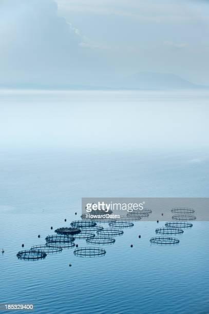Sea fish farm located in Greece