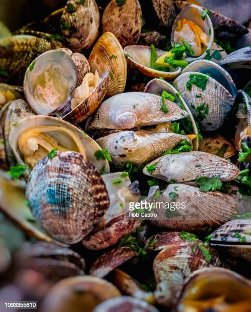 sea food clams - rob castro stock pictures, royalty-free photos & images