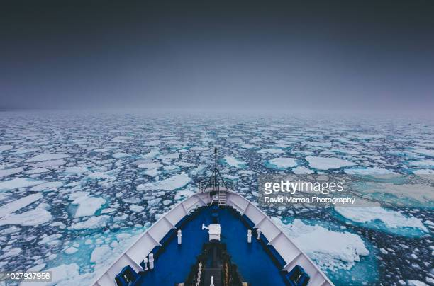 sea ice edge - pack ice stock pictures, royalty-free photos & images