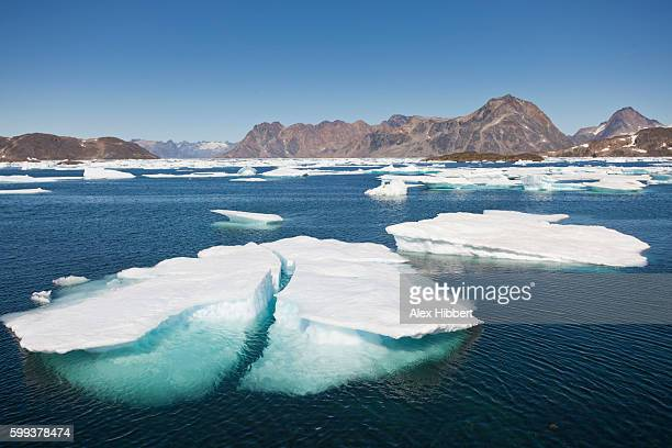 sea ice near kulusuk, greenland - pack ice stock pictures, royalty-free photos & images