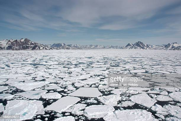 sea ice - environmental issues stock pictures, royalty-free photos & images