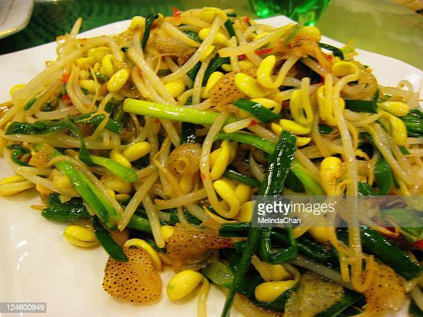 sea jelly with bean sprout - zhanjiang stock photos and pictures
