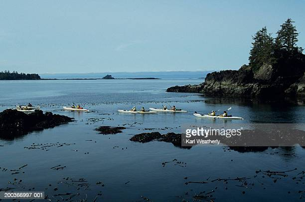 sea kayaking, clayoquot sound, west coast vancouver island, canada, elevated view - vancouver island stock pictures, royalty-free photos & images