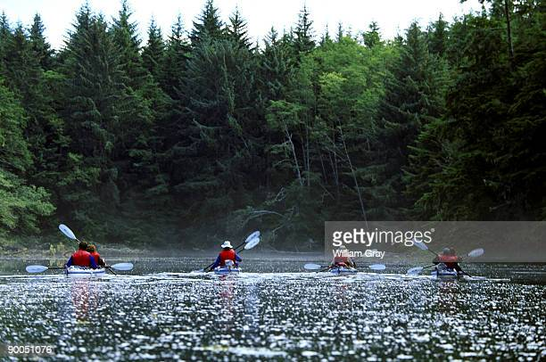 sea kayaking johnstone strait vancouver island british columbia - vancouver island stock pictures, royalty-free photos & images