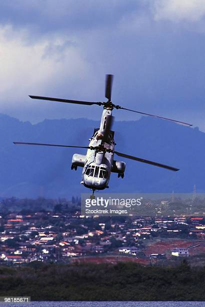a ch-46 sea knight helicopter in flight. - helicopter rotors stock photos and pictures