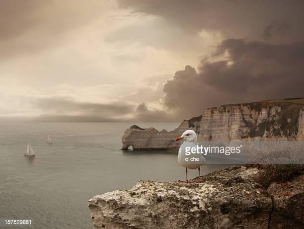Sea landscape with stone bridge, ships and seagull