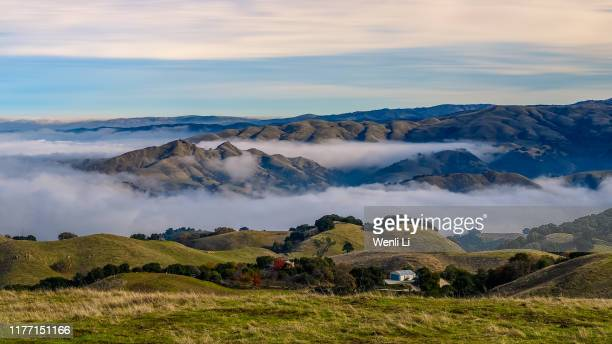 sea of clouds in mission peak regional preserve - fremont california stock pictures, royalty-free photos & images