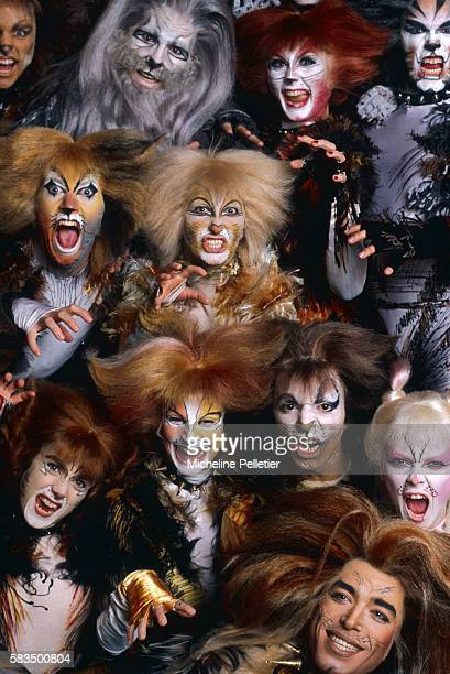 30 Top Cats Musical Pictures, Photos, & Images - Getty Images