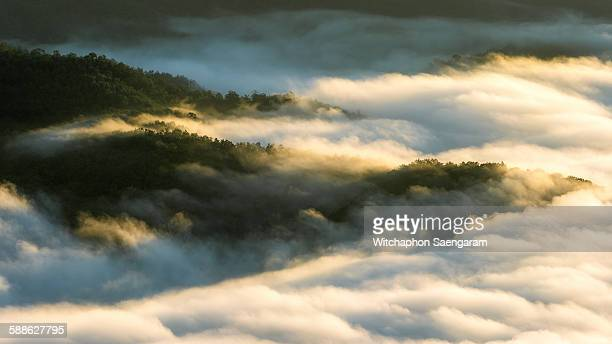 sea of fog cover the mountain at morning sunlight - de rola imagens e fotografias de stock