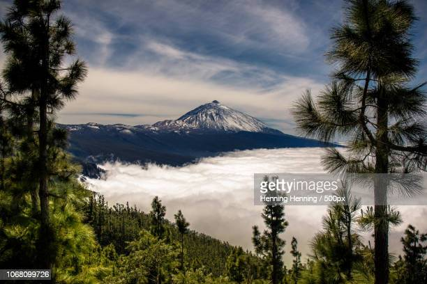 sea of fog with snowcapped mountain peak above - pico de teide stock pictures, royalty-free photos & images