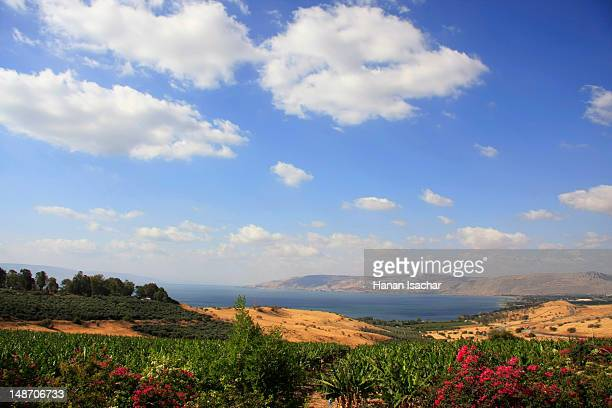 sea of galilee from the mount of beatitudes. - israel stock pictures, royalty-free photos & images