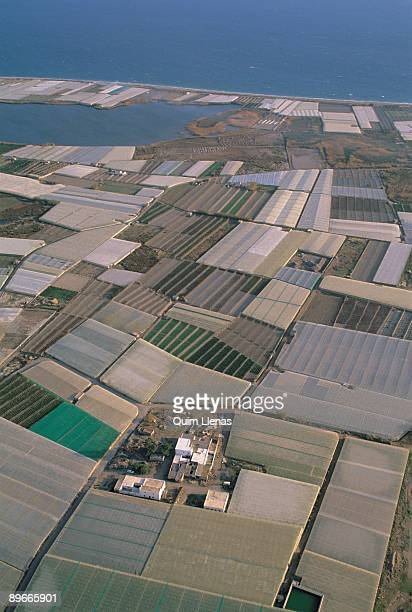 Sea of plastic Almeria Aerial view of the intensive cultivations under plastic next to the sea