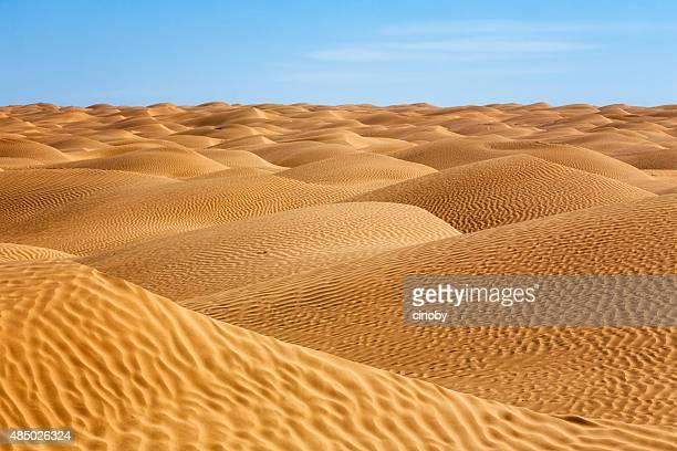 mar de arena en el desierto del sahara de túnez - great sandy desert fotografías e imágenes de stock