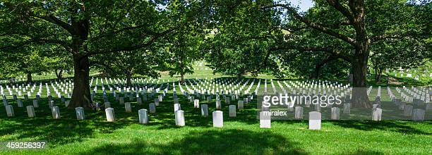 Sea of Tombstones at Arlington National Cemetery, Virginia, USA