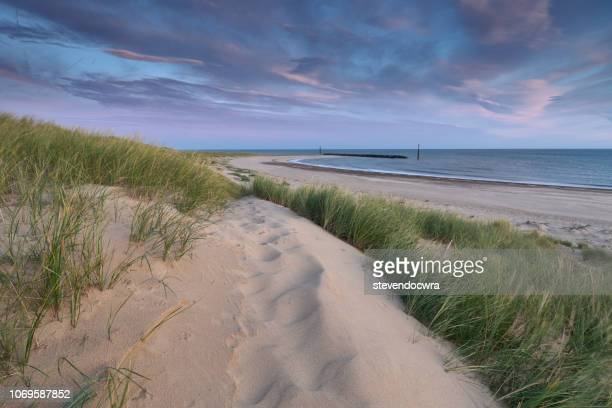 sea palling beach at dawn - natal brazil stock pictures, royalty-free photos & images