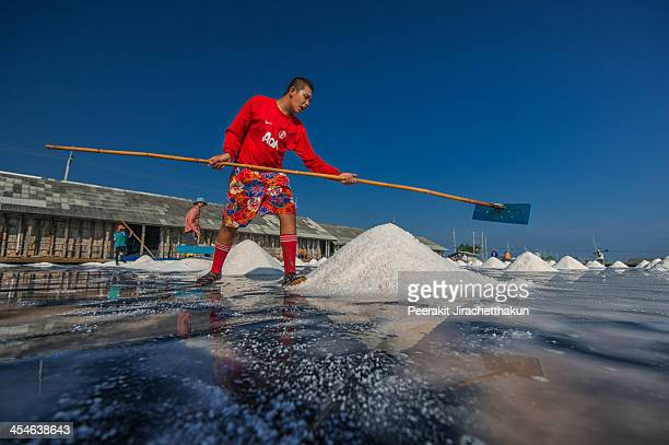 Sea salt is produced from the evaporation of seawater which can beused in cooking and cosmetics. A young man is harvesting salt together with his...