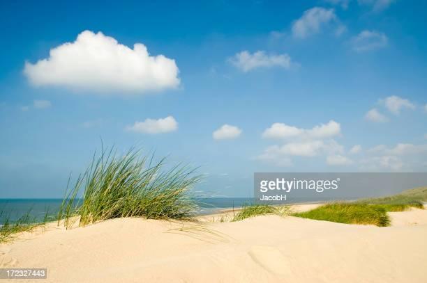 La mer, le sable et les Dunes