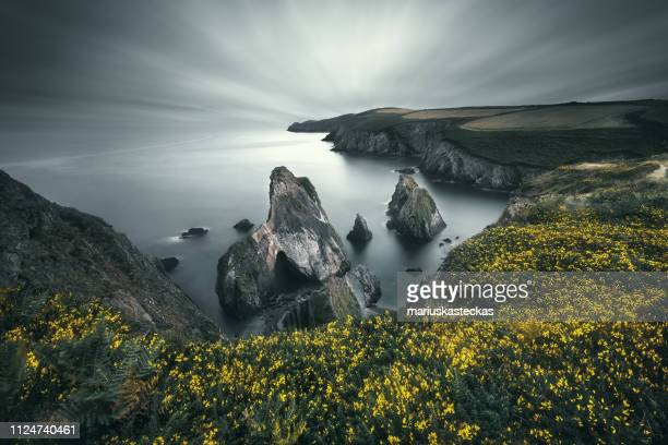 sea stacks in atlantic ocean, county cork, ireland - county cork stock pictures, royalty-free photos & images