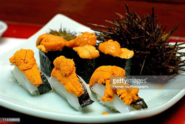 sea urchin uni - sea urchin stock pictures, royalty-free photos & images