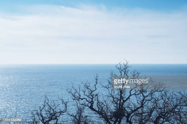 sea view from the mountain - 中国北東部 ストックフォトと画像