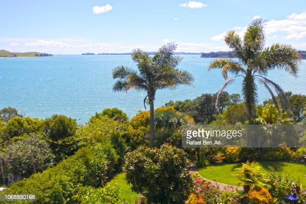 sea view in auckland new zealand - rafael ben ari stock pictures, royalty-free photos & images