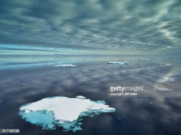 sea with icebergs and mirrored sky, southern ocean, antarctica - altocumulus stockfoto's en -beelden