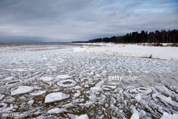 Mer avec une mince couche de glace dans une soirée d'hiver près de la roche Veczemju