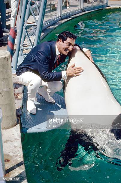 "Sea World"" Episode 6 -- Pictured: Host Danny Thomas kisses Shamu the Whale at Sea World San Diego --"