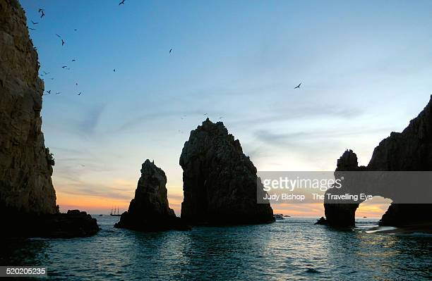 Seabirds around Land's End rocks, at sunset