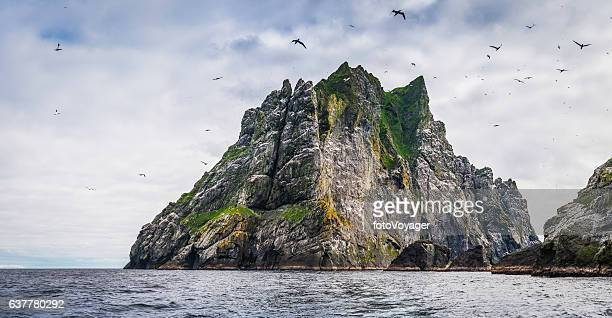 Seabirds flying over dramatic ocean island cliffs St Kilda Scotland