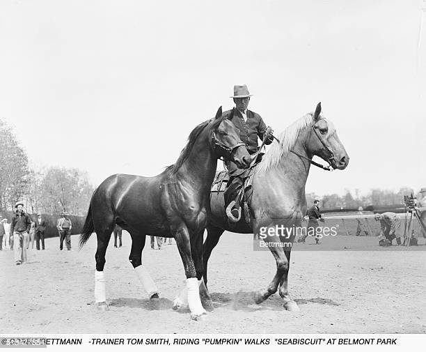 """Seabiscuit on the battlefield. Belmont Park, N.Y. Trainer Tom Smith, riding """"Pumpkin"""", is shown walking """"Seabiscuit"""" on the track at Belmont Park..."""