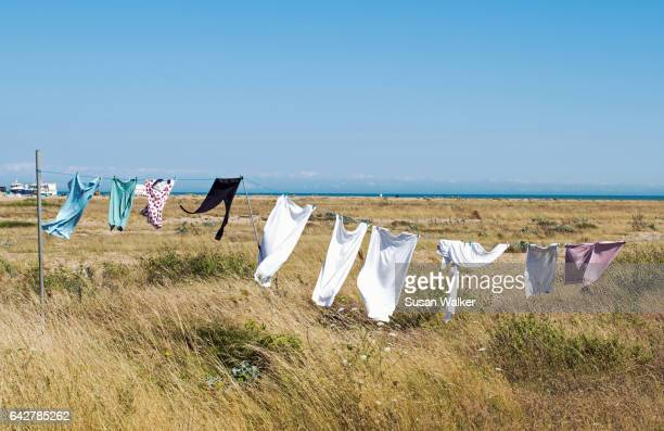 sea-breeze laundry - sea_breeze stock pictures, royalty-free photos & images