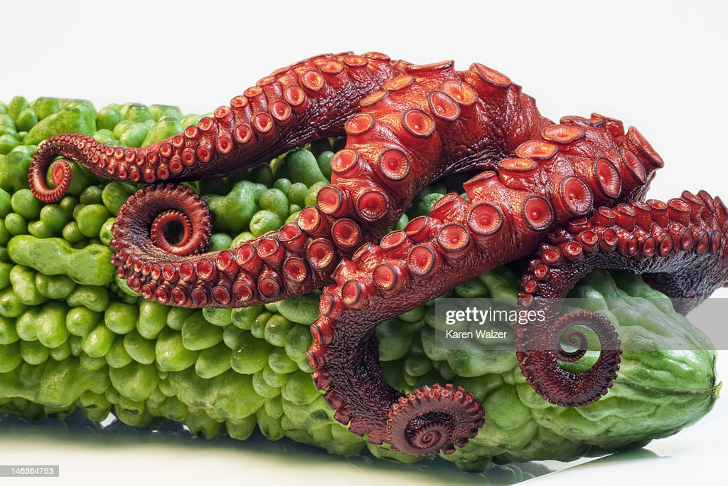 Seafood and Veggies : Stock Photo