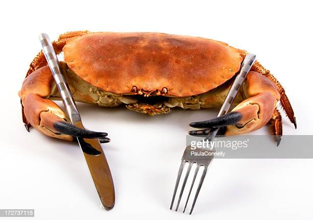 seafood dinner - crab stock photos and pictures