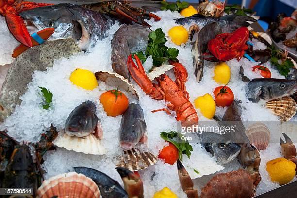 Seafood display on ice