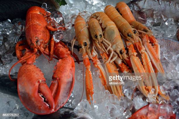 Seafood from the Adriatic Sea on a fish market on the Rialto bridge of Venice in Italy