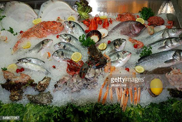 Seafood from the Adriatic Sea on a market in Venice