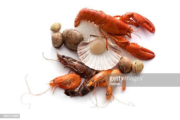 Seafood: Lobster, Shrimp, Prawn annd Shellfish