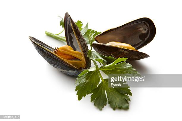 seafood: mussels - mussel stock pictures, royalty-free photos & images
