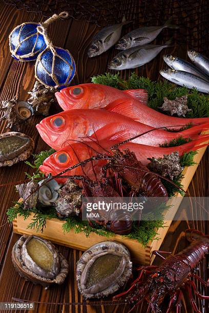 seafood of izu region - trachurus japonicus stock pictures, royalty-free photos & images