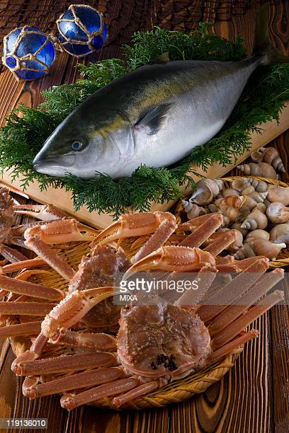 seafood of toyama bay - chionoecetes opilio stock photos and pictures