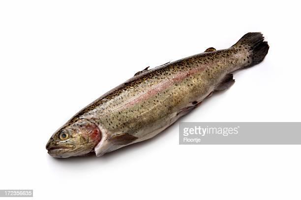 Meeresfrüchte: Trout Forelle