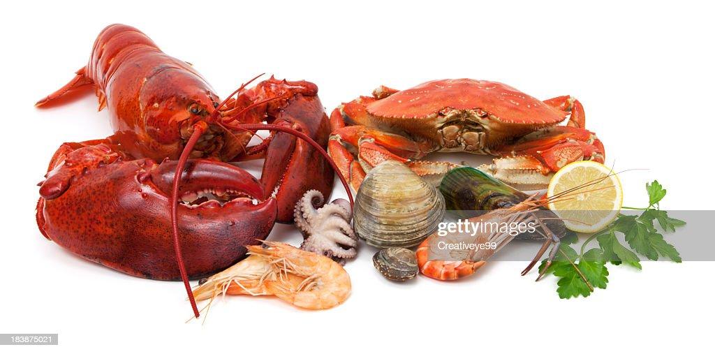 Seafood variety : Stock Photo