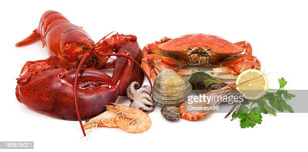 seafood variety - seafood stock pictures, royalty-free photos & images