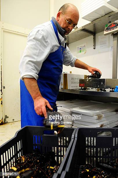 A seafood wholesaler prepares some lobsters in the seafood department of Rungis Market on December 13 2013 in Rungis France Rungis is the world's...
