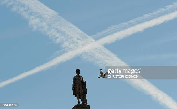 A seagull flies from a statue of Rome's Campidoglio during the visit by Libya's leader Moamer Kadhafi on June 11 2009 AFP PHOTO / CHRISTOPHE SIMON